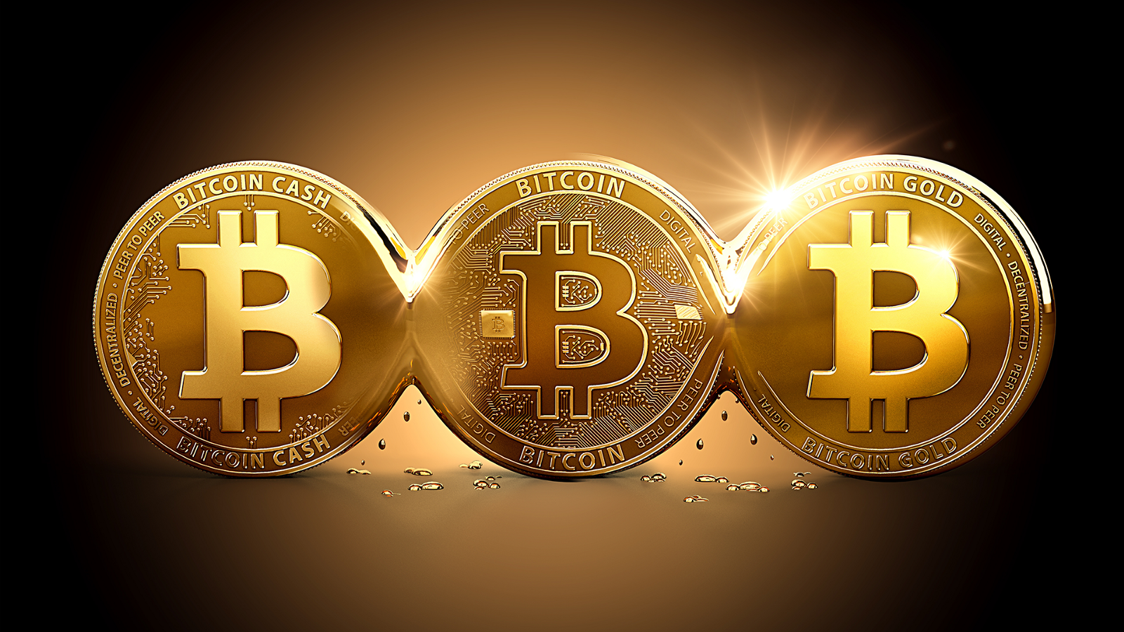 Understanding What Actually is A Bitcoin