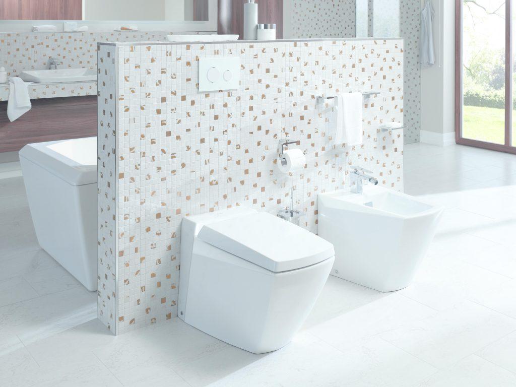 Singapore toilet bowl